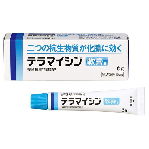 武田CH皮肤软膏6g