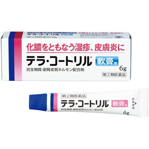 武田CH湿疹皮肤炎软膏6g