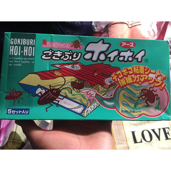 日本安速小强恢恢蟑螂屋5枚装
