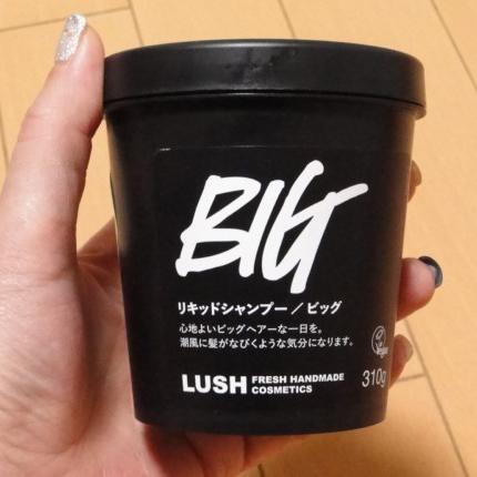 BIG 310g